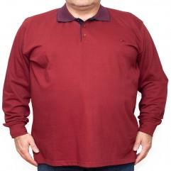 Bluza subtire visinie cu guler